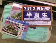 200672_hangesyo_1