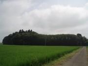 2006730_noda_02_1