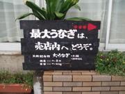 2006810_ikedako_06