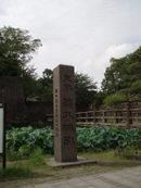 2006811_kagoshima_02