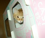 cat_tower_03